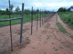 Zaun im Hlane NP