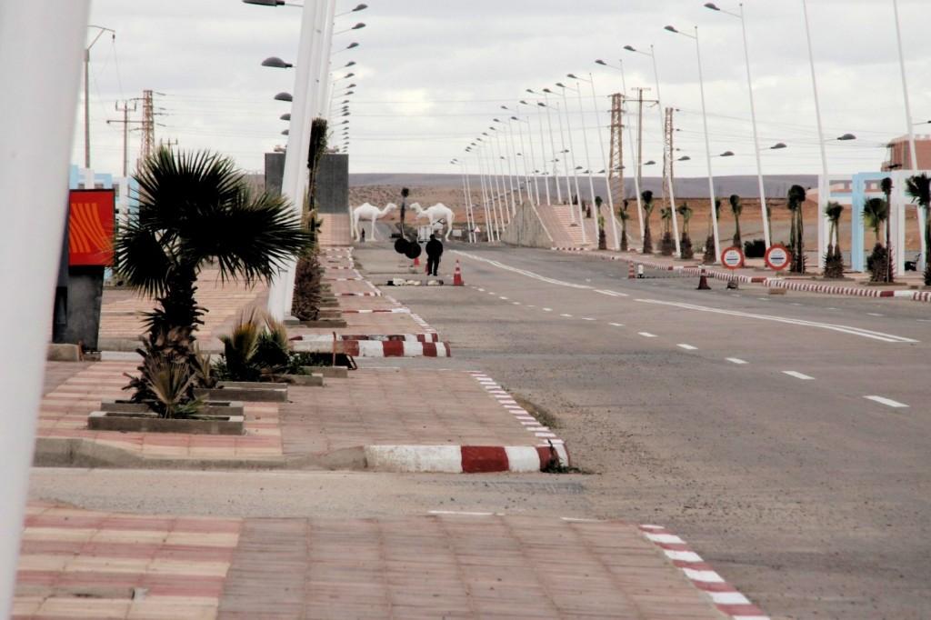 Dresden Dakar Banjul, in Dakhla