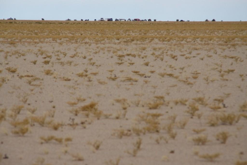 Da kommen sie dresden dakar banjul mauretanien sahara