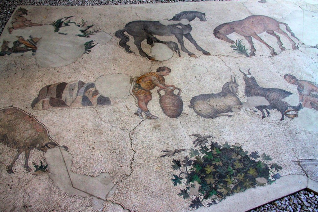 The Great Palace Mosaic Museum Istanbul