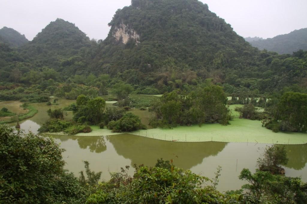 Birds Valley Tam coc  Vietnam