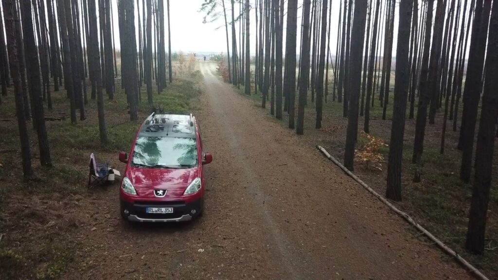 Wald am Tagebau Nochten