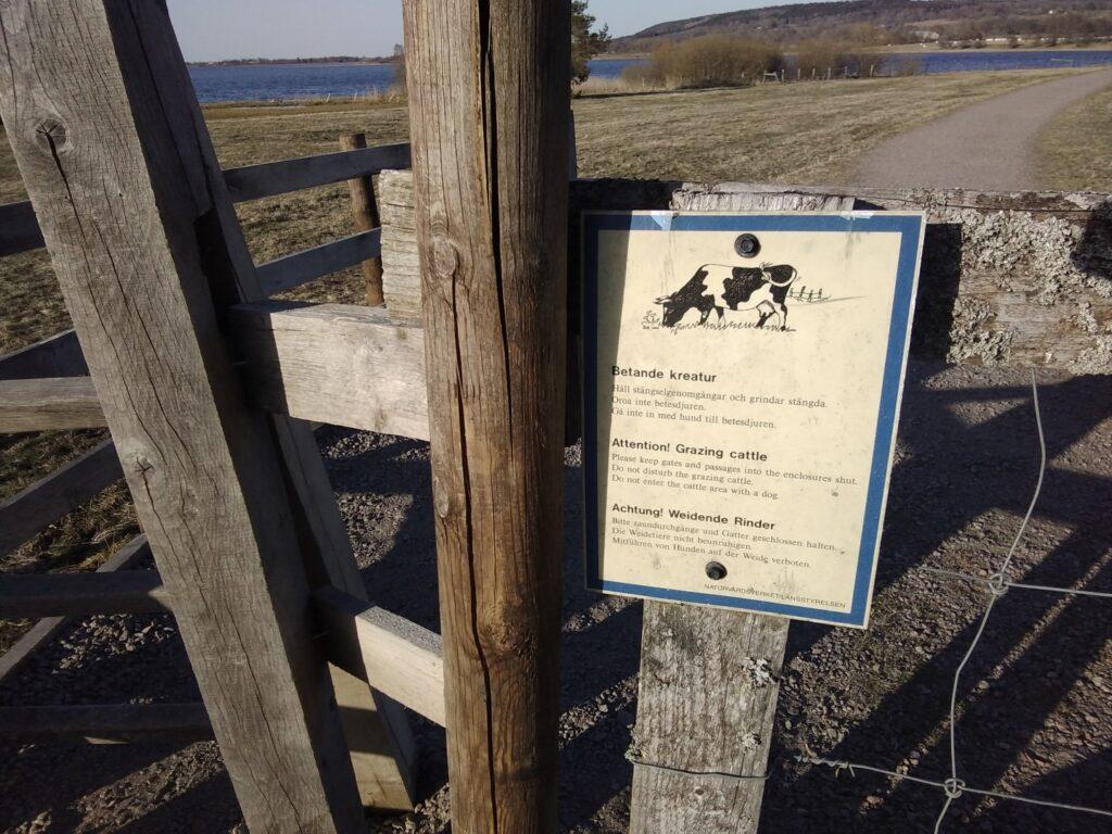Durchgang zur Viehkoppel am Hornborgasjön