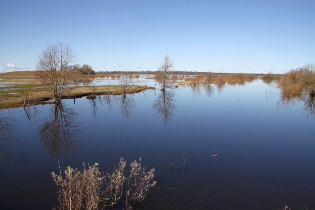 am Hornborgasjön