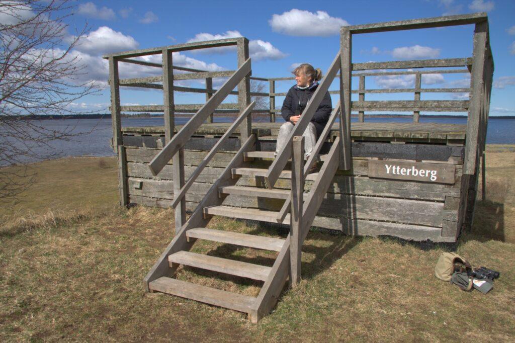 Beobachtungspunkt Ytterberg am Hornborgasjön